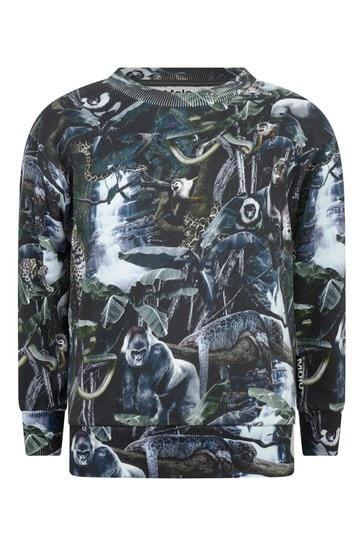 보이즈 오가닉 코튼 정글 스웨터