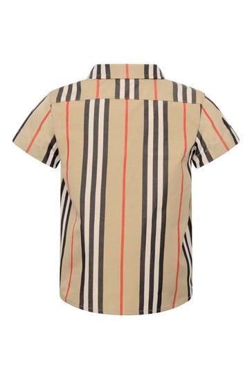 Baby Boys Beige Icon Stripe Cotton Shirt