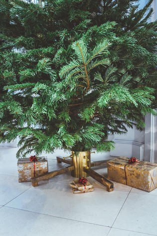 Christmas Tree Stand by Ivyline