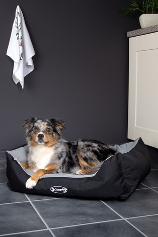 Small Expedition Box Bed by Scruffs