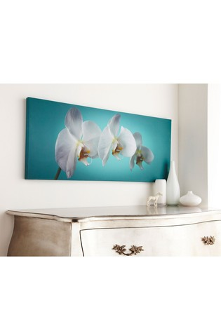Teal Orchid Wall Art by