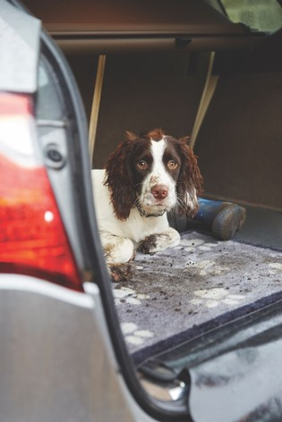 Howler & Scratch Washable Big Paws Dog Car Mat