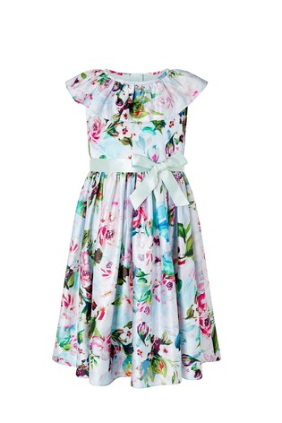 Monsoon Multi S.E.W Heidi Floral Print Pleated Dress