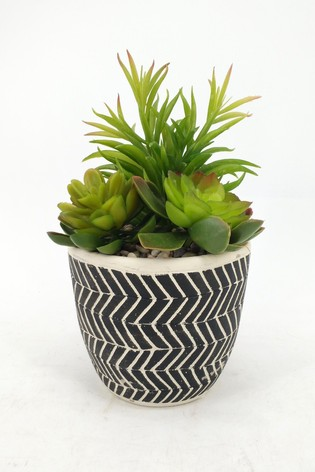 Bayswood Mixed Faux Succulent Ceramic Plant Pot