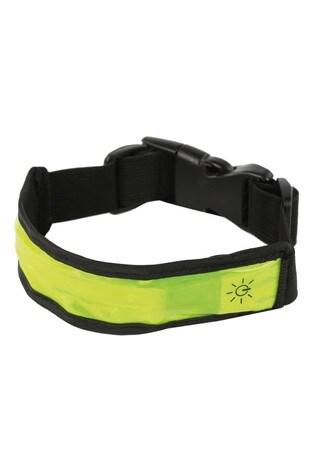 Regatta LED Dog Collar