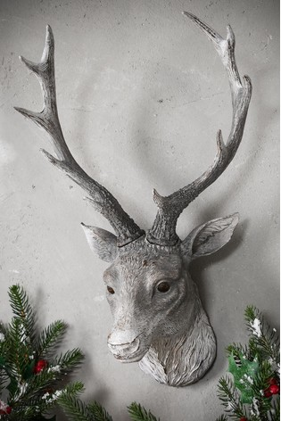 Ambrose Stag Head by Gallery Direct