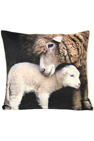 Faux Sherpa Lamb Cushion by Riva Home