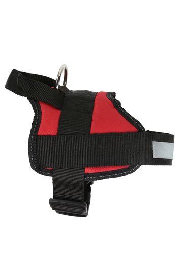 Regatta Reflective Dog Harness