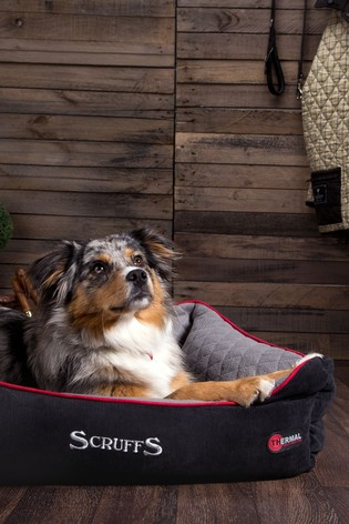 Washable Thermal Small Breed Dog Bed by Scruffs®