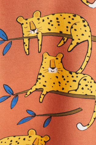 Rust Organic Cotton 2 Piece Cheetah T-Shirt/Legging Set (0mths-3yrs)