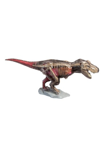 Discovery Mindblown Anatomy T-Rex Kit