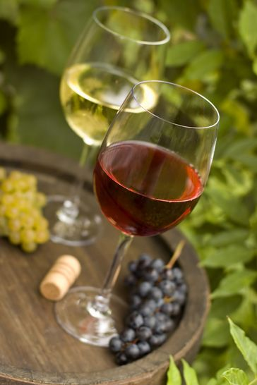 Winery Brewery Tour With Tasting For Two Gift Experience by Activity Superstore