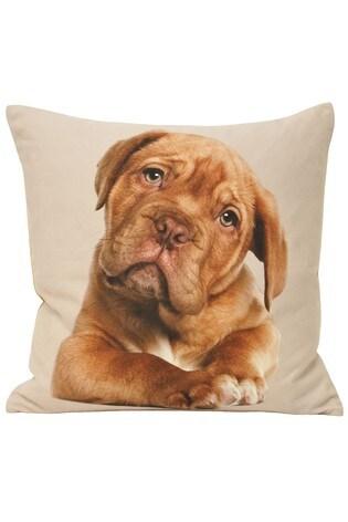 Riva Home Cream Puppy Cushion