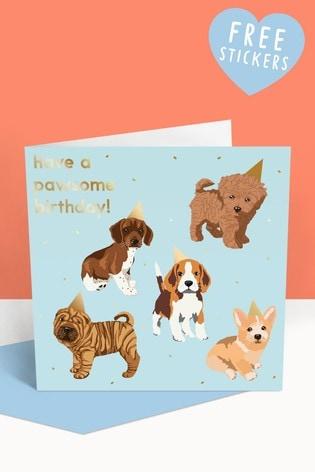Central 23 Birthday Hat Dogs Birthday Card