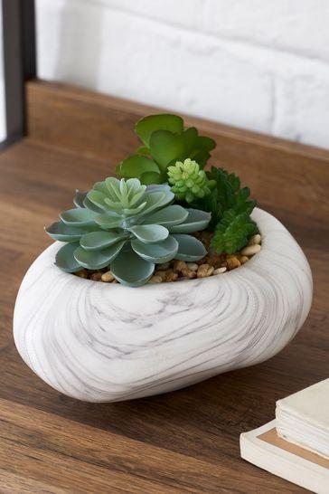 Artificial Succulents In Pebble