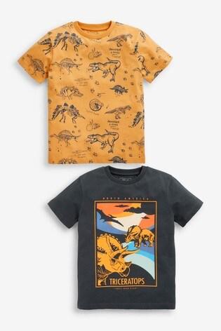 Ochre Dino 2 Pack Graphic T-Shirts (3-16yrs)