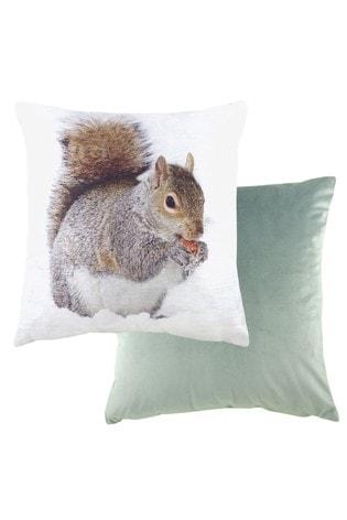 Squirrel Photographic Cushion by Evans Lichfield