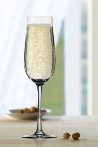 Set of 6 Weinland Champagne Flutes By The DRH Collection