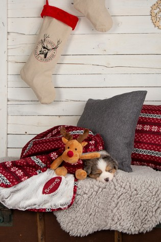 Santa Paws Blanket & Reindeer Gift Set by Scruffs®