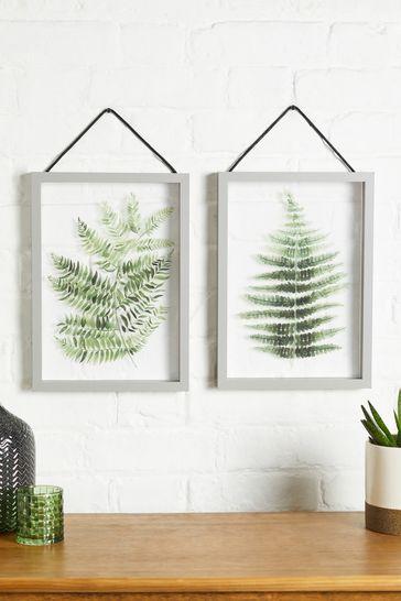 Set of 2 Floating Botanical Hanging Frames