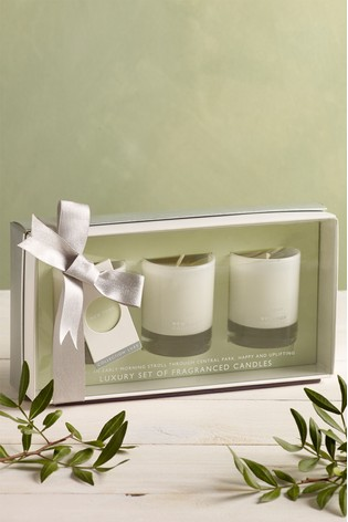 Set of 3 New York Collection Luxe Candles