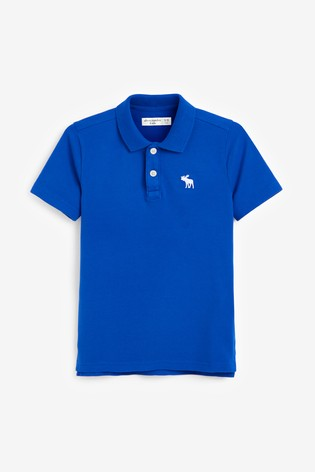 Abercrombie & Fitch Blue Poloshirt