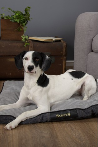 Washable Large Breed Tweed Pet Mattress Bed by Scruffs®