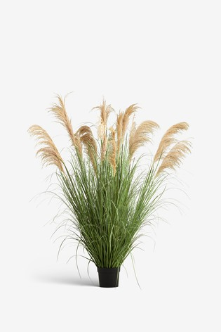 Artificial Extra Large Pampas Grass Plant