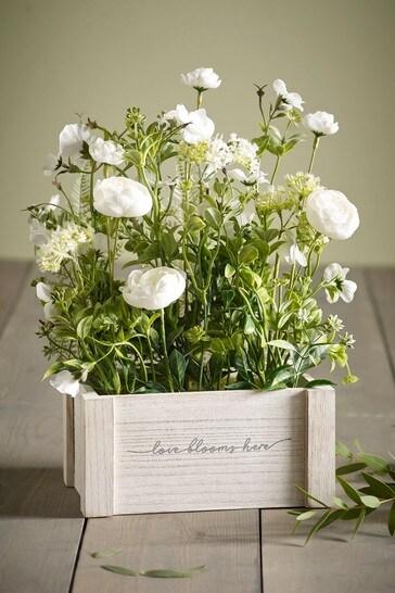 Love Blooms Here Window Box
