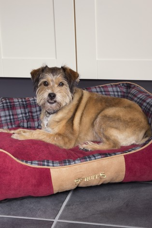 Highland Extra Large Breed Dog Box Bed by Scruffs®