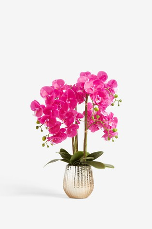 Large Artificial Orchid In Pot