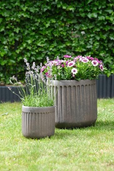 Set of 2 Fibreclay Planters by Ivyline