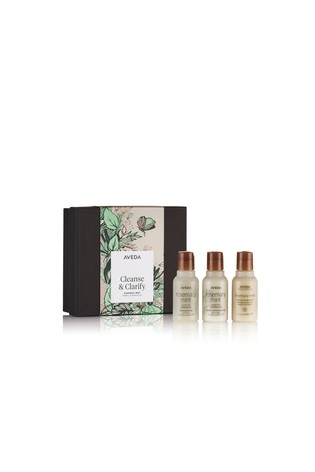Aveda Cleanse & Clarify Rosemary Mint Travel Essentials