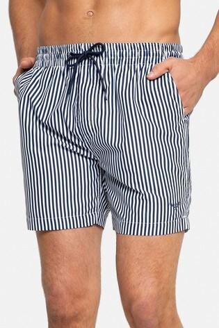 Threadbare Navy and White Stripe Swim Shorts