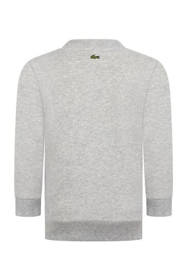 Boys Grey Cotton Sweater