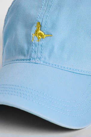 5e0e53780ed Buy Jack Wills Sky Blue Enfield Striped Pheasant Cap from Next Germany