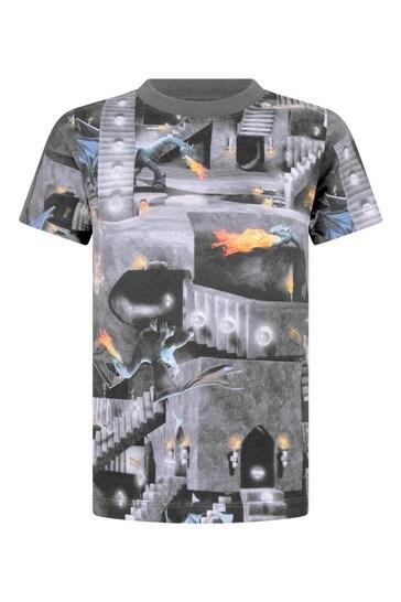Boys Organic Cotton Amazing Game T-Shirt