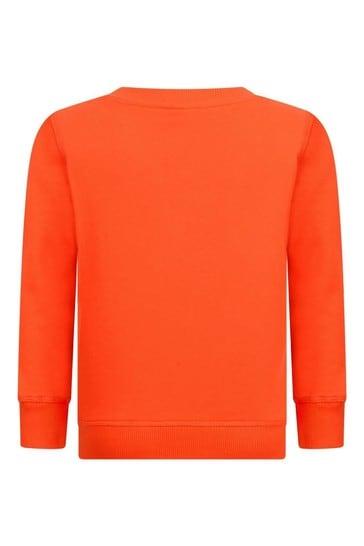 Boys Tiger Sweater