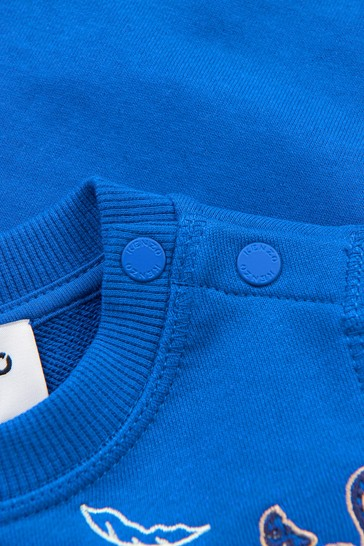 Baby Boys Blue Sweat Top