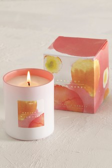 Apricot & Wild Herbs Boxed Candle