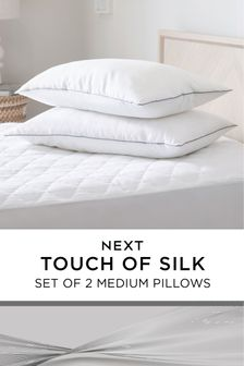 Set of 2 Touch Of Silk Medium Pillows