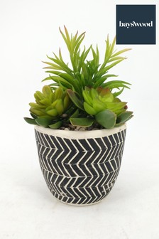 Bayswood Mixed Faux Succulent Ceramic Plant Pot