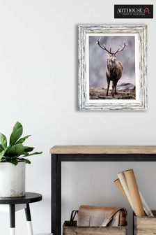 Winter Stag Framed Print by Arthouse