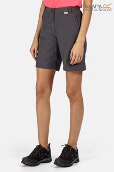 Regatta Grey Chaska II Shorts