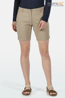 Regatta Solita II Shorts