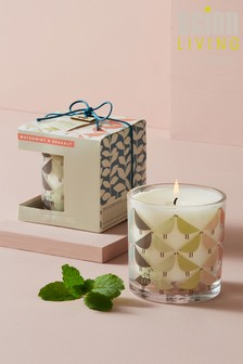 Scion Watermint & Seasalt Candle