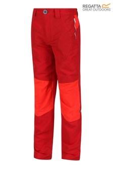Regatta Sorcer IV Mountain Trousers