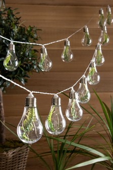 Set of 15 Solar Faux Fern Festoon Line Lights with Firefly LED