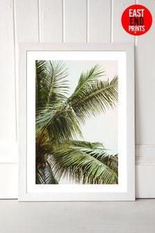 Palm Trees by Honeymoon Hotel Framed Print