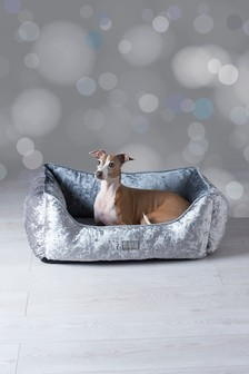 Velour Dog Bed